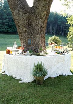 Love this table setting, looks great around the tree and we have a tree just like that in the backyard.