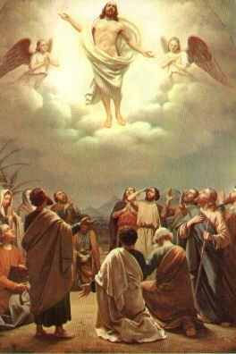 Padre bueno y misericordioso: Te pedimos por las intenciones del Santo Padre Por las personas que solicitan nuestra oración Por las neces...