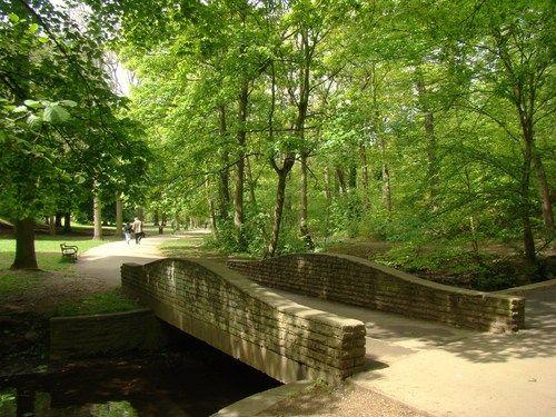 Endcliffe Park, Sheffield. My Park