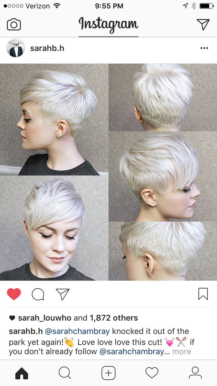 The best images about hair to love on pinterest neon hair color