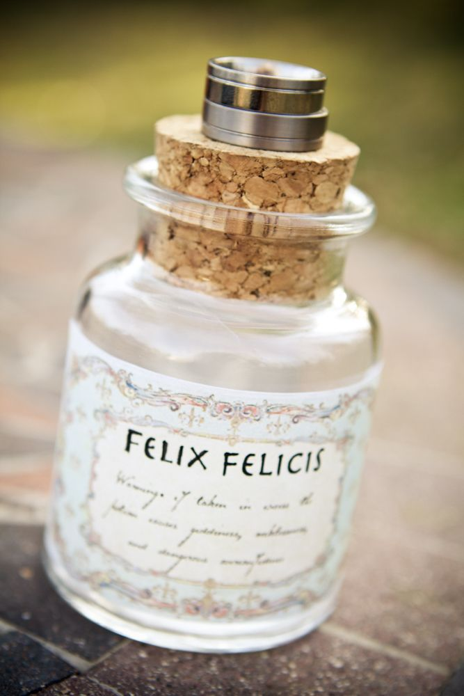 Harry Potter Theme Wedding: We don't think this couple is going to need any Felix Felicis (luck potion)!