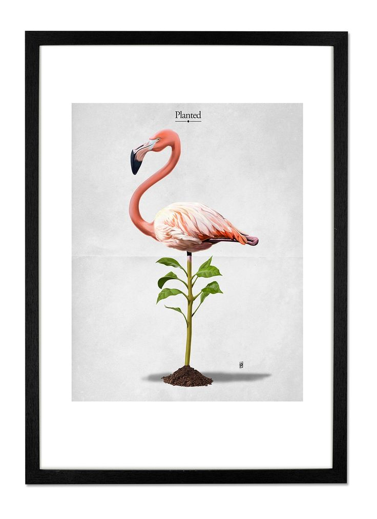 Planted by Rob Snow. Your walls deserve a bit of love too. Prints from £29. MADE.COM