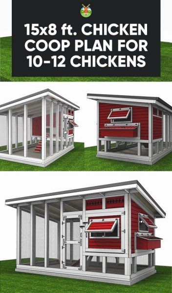 Best 25 chicken coop plans ideas on pinterest diy for Plans for a chicken coop for 12 chickens