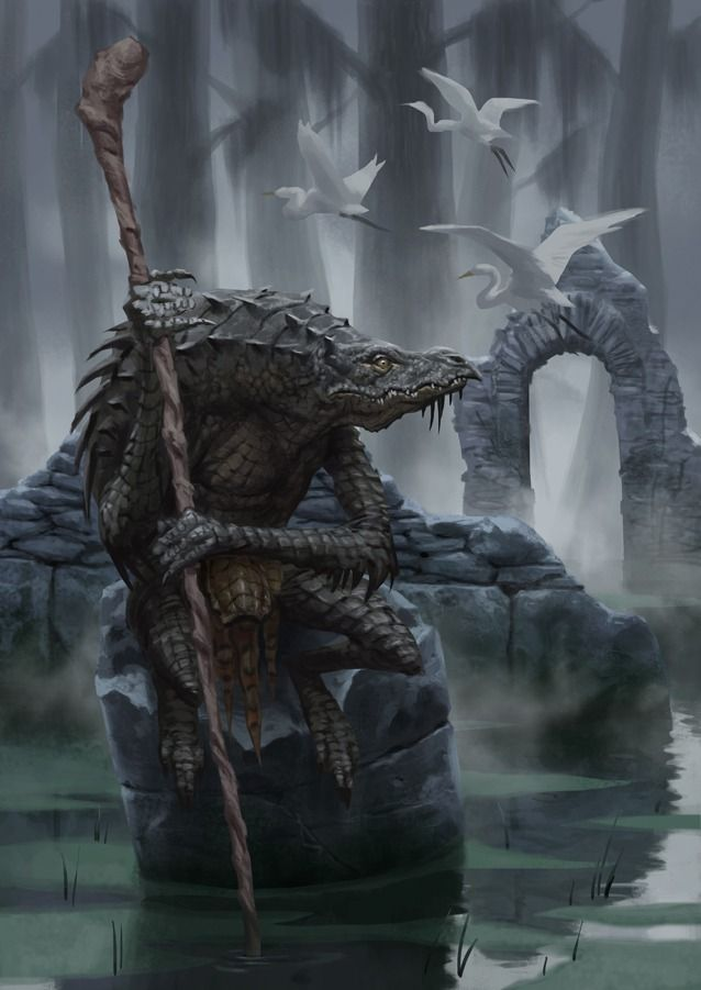 Crokodan Shaman. On the border between the Ashkaari Plains and the Old Remean forests is a swampland home to the first priests of Daruroa, the Crokodan. Far less violent than their southern seaborne cousins, the Crokodan of the swamps are wise and mischievous.