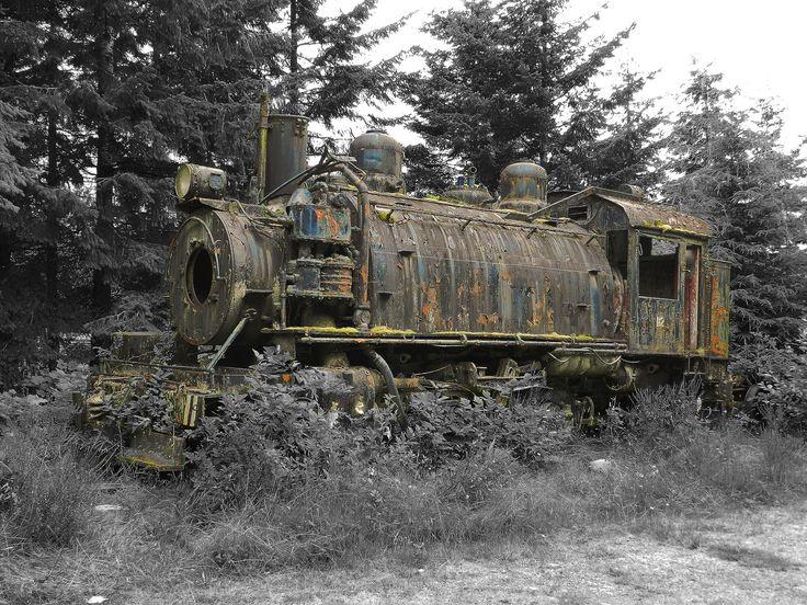 https://flic.kr/p/da9vUR | Old Train Wreck | Old Train Wreck close to Telegraph Cove on Vancouver Island. I took the photo with a Nikon Coolpix P500 last summer.