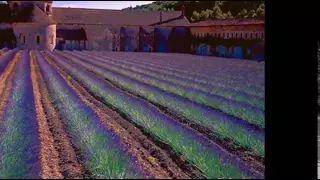 stabat mater vivaldi - YouTube