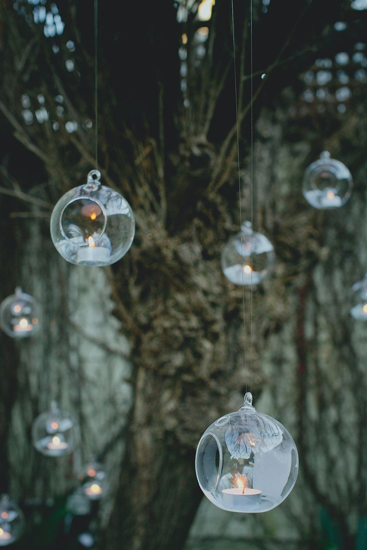 DIY lights backyard wedding