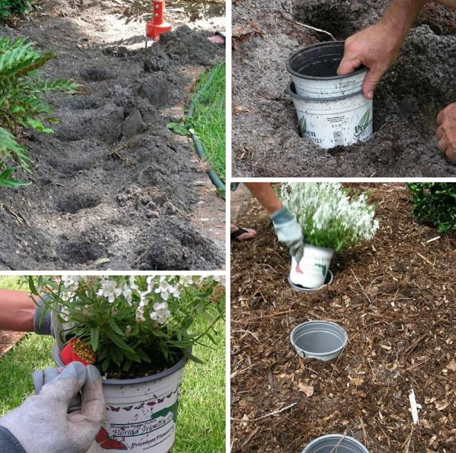 вкопайте в землю несколько пластиковых горшков и вставьте в них сезонные контейнерные растения. Когда цветы утратят декоративность, их можно легко заменить новыми. Так ваш цветник всегда будет красивым и нарядным.