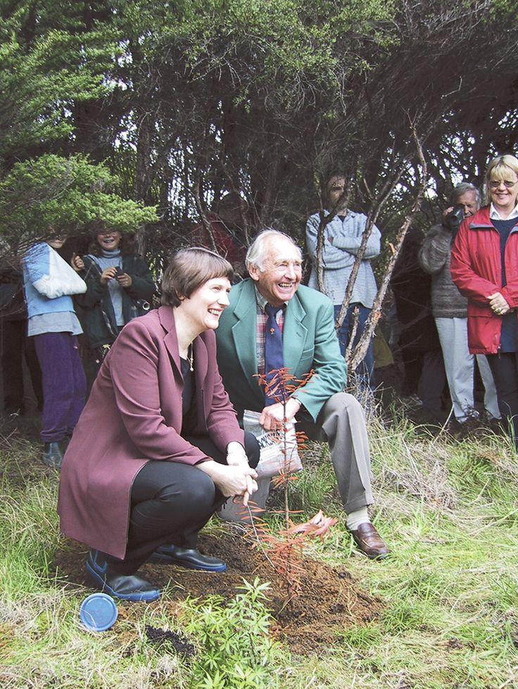 Kauri 2000 to celebrate planting of 40,000 kauri
