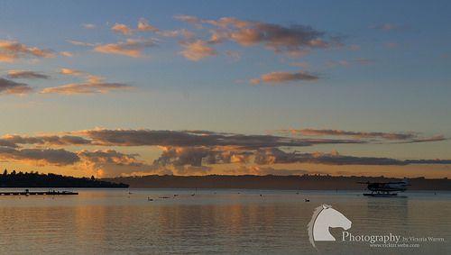 Lake Rotorua Taupo New Zealand