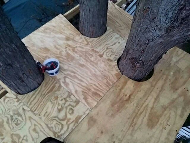 """3/4"""" pressure treated plywood is expensive!"""