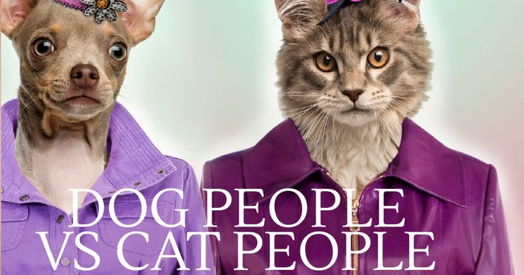 Are there specific personality traits in people who prefer either cats or dogs over the other?