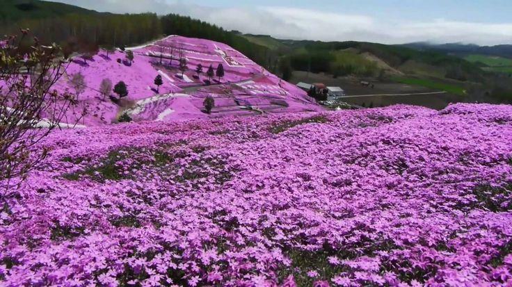 Takinoue-Park Hokkaido