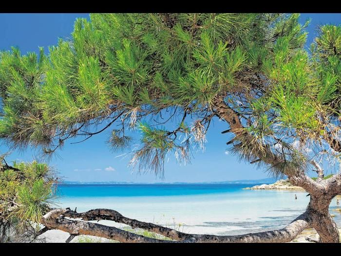Traumstrand: Karidi Beach auf Chalkidiki.