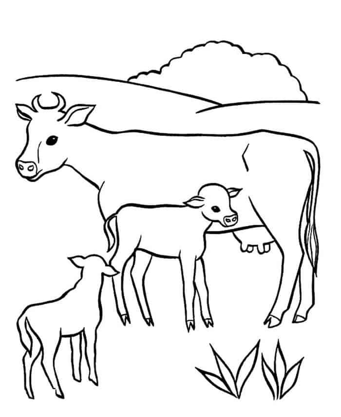Cow And Calf Coloring Pages Cow Coloring Pages Farm Animal Coloring Pages Baby Coloring Pages