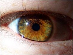 Only 12 percent of the population has hazel eyes. So, bask in the fabulousness of my eyes.