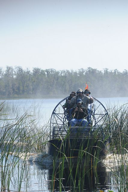 An airboat, also known as a fanboat, is a flat-bottomed vessel (John boat) propelled in a forward direction by an aircraft-type propeller and powered by either an aircraft or automotive engine. Airboats are a very popular means of transportation in the Florida Everglades, and Louisiana Bayou, where they are used for fishing, bowfishing, hunting and eco-tourism. (Source: Wikipedia)