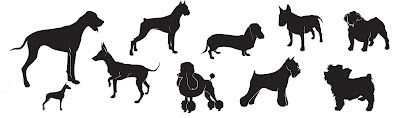 Download 78+ images about Cricut / SVG / Dogs on Pinterest ...