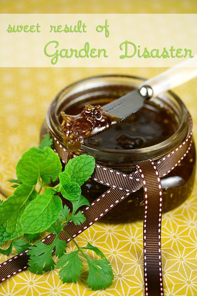 Green Tomato and Jalapeno Jam | Putting Food By | Pinterest