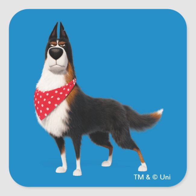 Secret Life Of Pets Rooster Square Sticker Zazzle Com Secret Life Of Pets Pet Trust Pet Paws