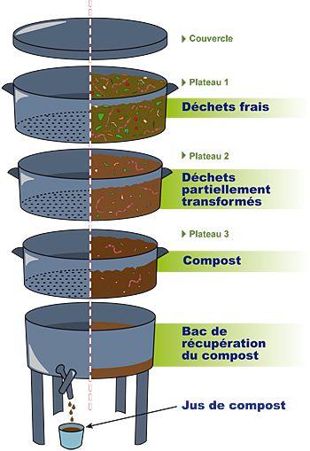 Le lombricompostage, le recyclage des déchets pour les citadins