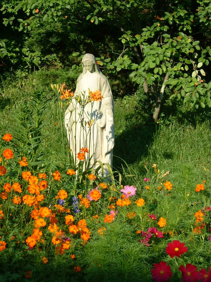 17 best images about our lady guadalupe shrine on for Plants for outdoor garden