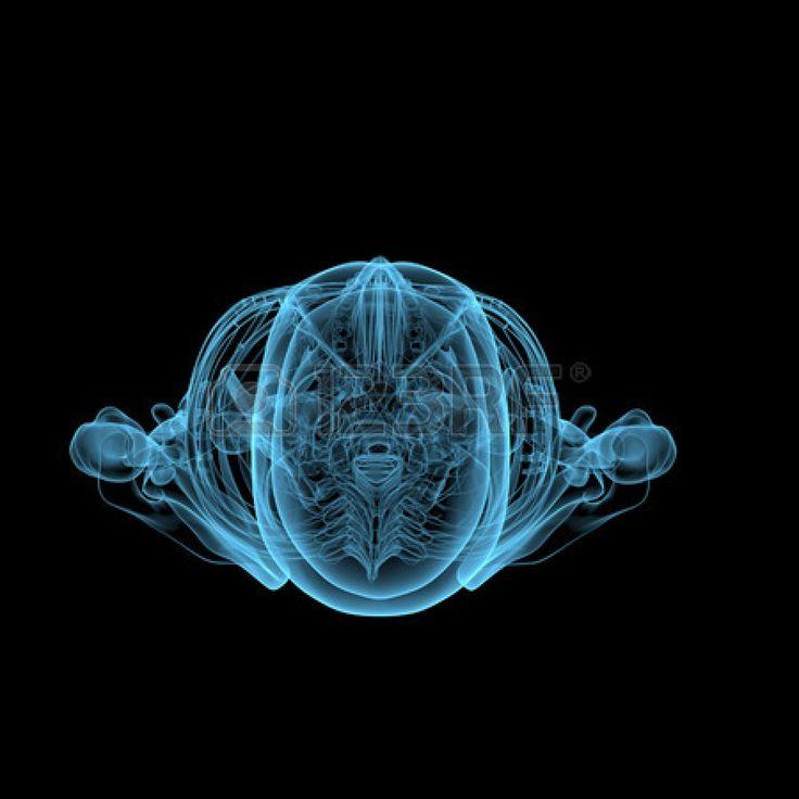 Squelette humain radiographie 3D bleu transparent isolé sur fond noir Banque d'images