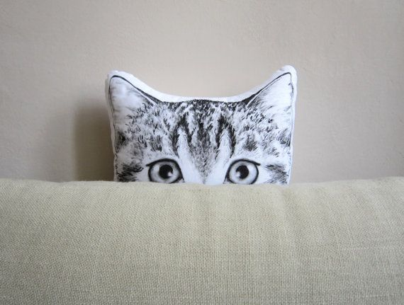 Hey, I found this really awesome Etsy listing at https://www.etsy.com/listing/174482243/cat-pillow-for-crazy-cat-lady-black-and