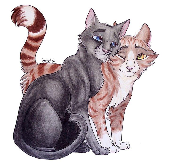 красивые картинки коты воители пары это крупнейшая