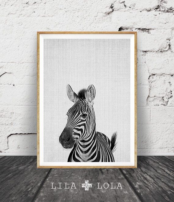 Zebra Print, Nursery Animal Wall Art, Kids Room Printable Instant Digital Download, Black and White Safari Decor, Modern Minimalist Photo by LILAxLOLA on Etsy https://www.etsy.com/listing/252990671/zebra-print-nursery-animal-wall-art-kids