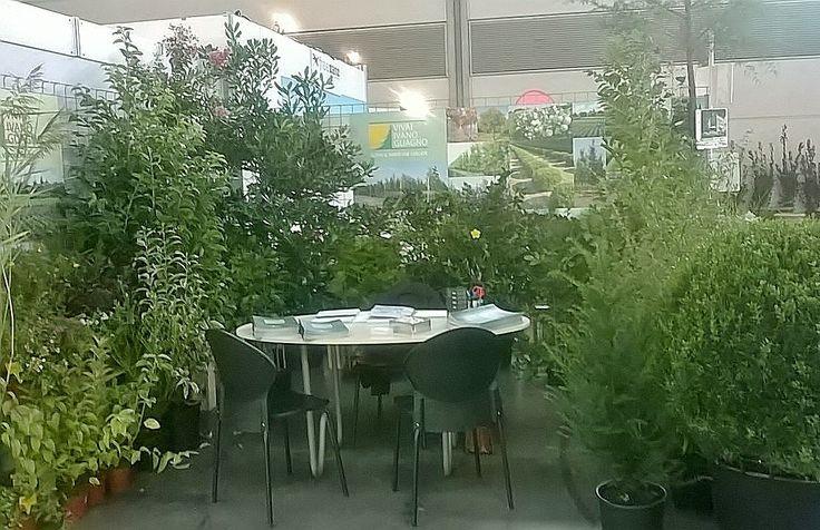 Terminato ieri il Flora Trade Show di Rimini!  Prossimo appuntamento? Mercoledì 21 con Flormart PadovaFiere, non mancare!  #messe #exhibition #fiera