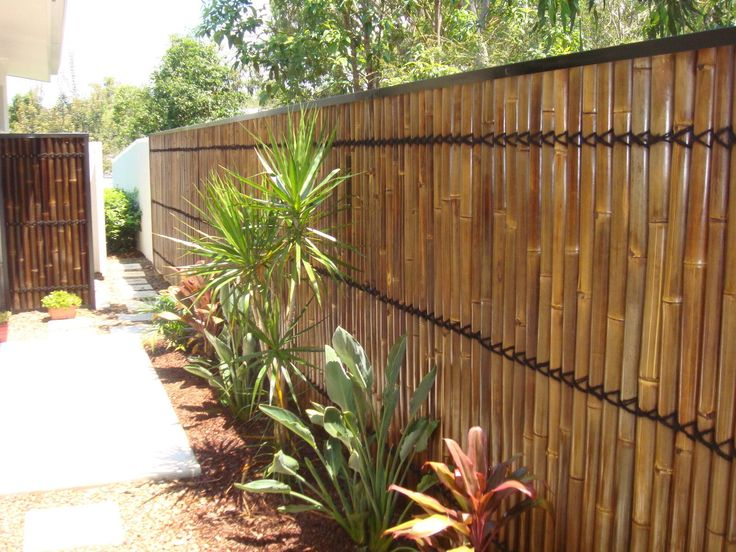 1000 Ideas About Bamboo Fencing On Pinterest Fence
