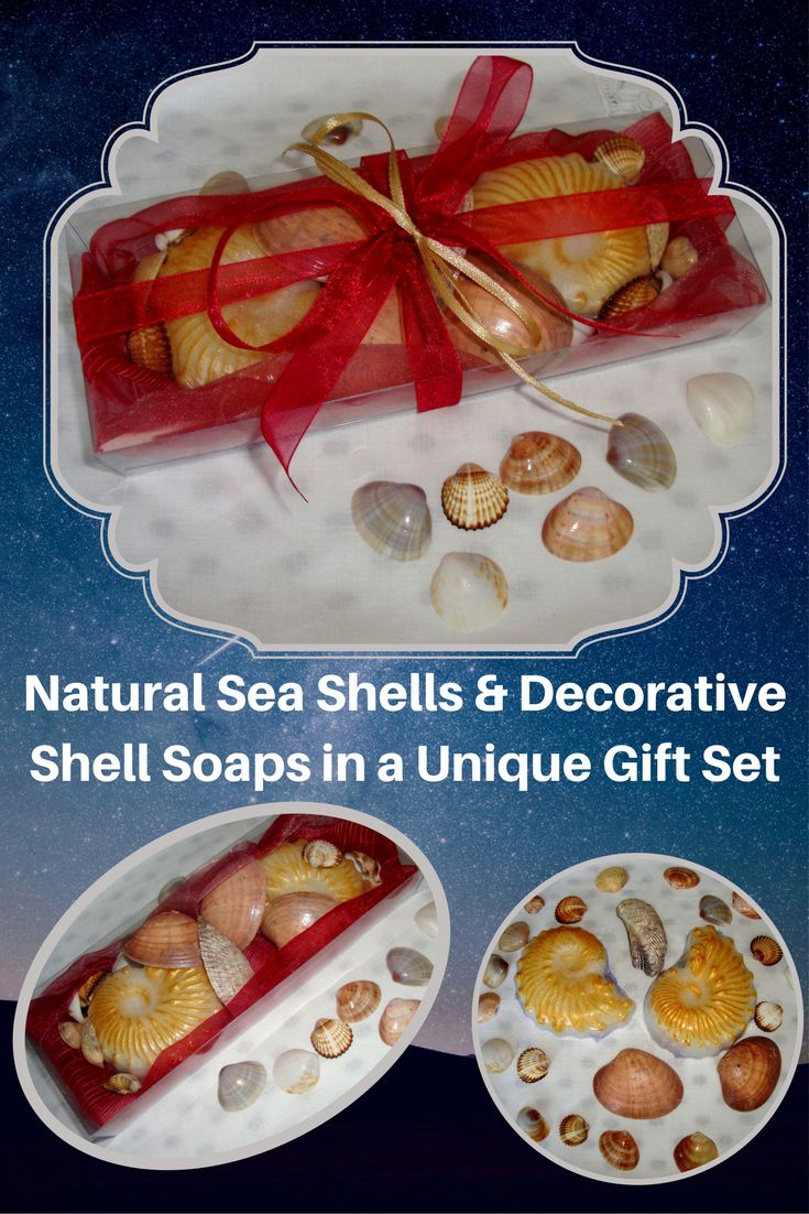 Natural Greek Sea Shells found on the beaches of Paros island (Aegean Sea) in a Red Color very nice decorated Handmade Gift Set with two golden cream Decorative Scented Luxury Soaps in pomegranate-berry perfume. Sea shells and natural handmade glycerin shell soaps for Greek Beaches memories and Aegean Seas Breath of Fresh Air!  We love red color all year, but the red is especially exciting at feast times, like Father's Day. A very elegant, stylish gift for Father's Day or for any other…