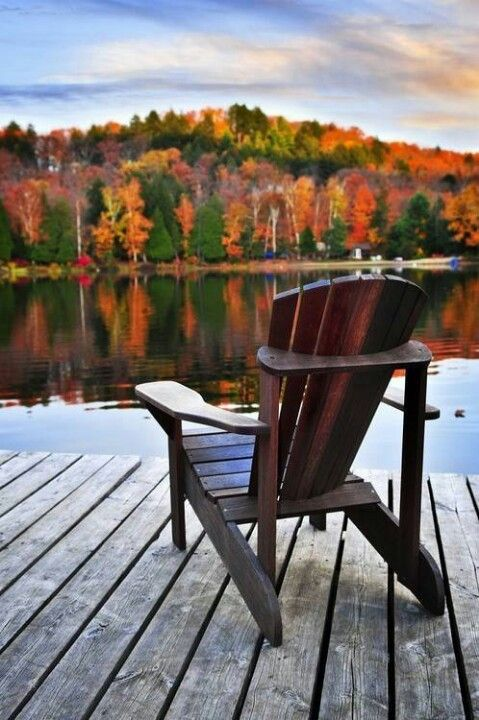 The gorgeous Autumn view. I could look at this all day long, curled up in a big sweater, a big blanket, a good book and a hot drink!