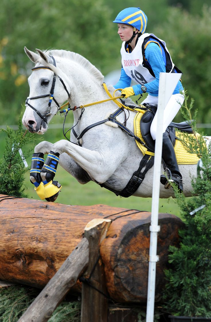 Horses jumping cross country - photo#55