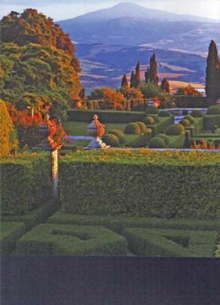 pines from afar: Things Italian