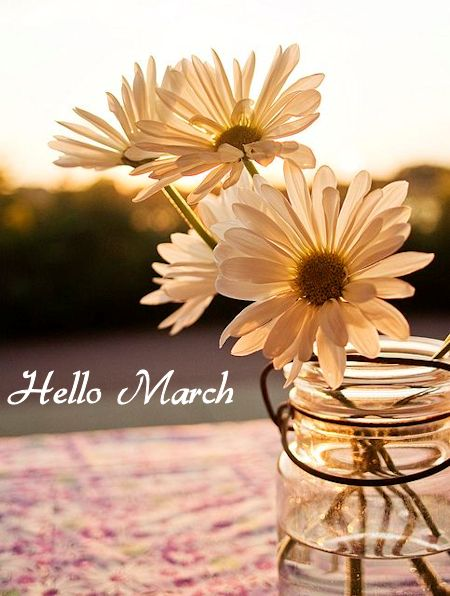 Hello March - It's a beautiful world!