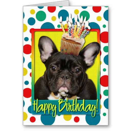 17 Best images about French Bulldog Birthday Card – Happy Birthday Greetings in French