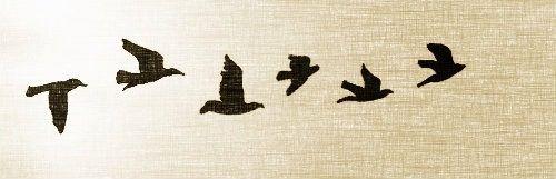 Flying bird tattoo design! It's so beautiful and it will be maybe my futur tatoo