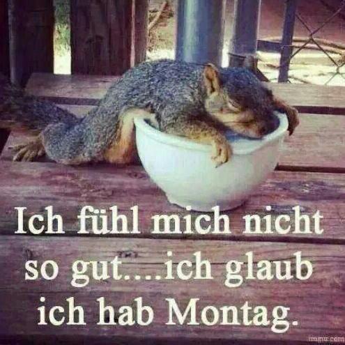 always on Mondays ….. … #always #mondays