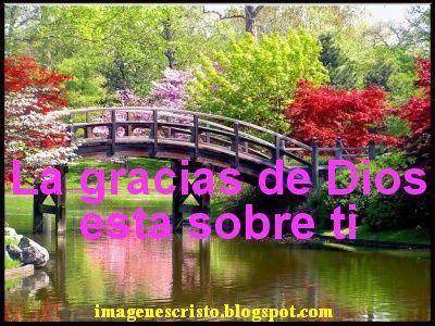 400_1237257250_spring.jpg (400×300)