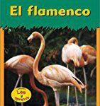 #7: El flamenco (Animales del zoológico) (Spanish Edition)