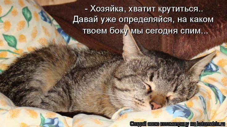 Вконтакт, а что все уже спят картинки прикольные