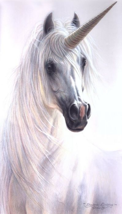 Sadly unicorns were never alive (not proved) but I love them an thought they should be here