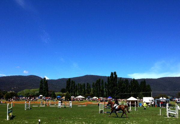 #Huon Show: Tasmanian Agricultural Society event at Ranelagh in November. #Showjumping. Article and photo for Think #Tasmania.