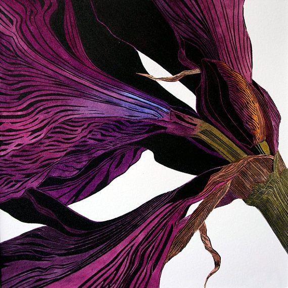 Amaryllis, linocut print in hand coloured variable limited edition: Irene Helen MacKenzie