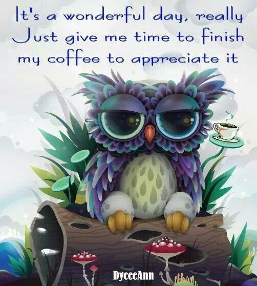 It's a wonderful day, really. Just let me finish my coffee to appreciate it.