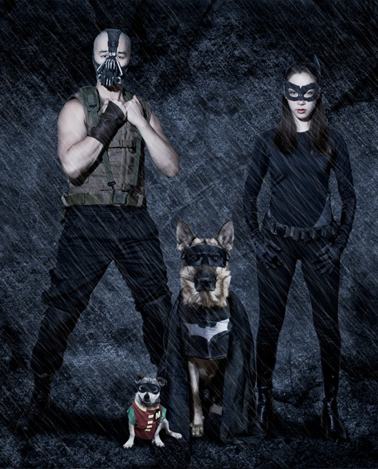 Superhero Dogs and Super Villain Parents – The Dark Knight ...