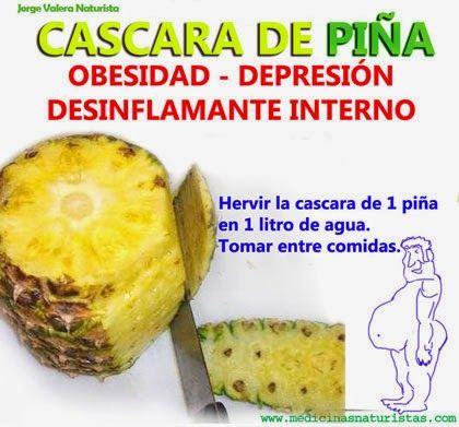 TU SALUD: PIÑA - ANANA (Ananas Comosus)