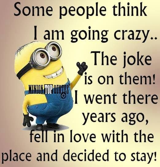 Medical Funny Minion Quotes